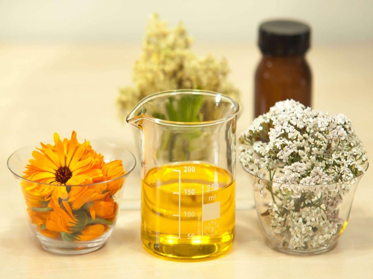 Здраве от природата - Натурални и БИО продукти - Здраве & Вино