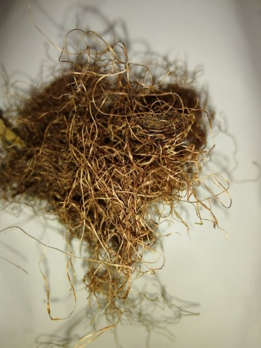 царевична коса