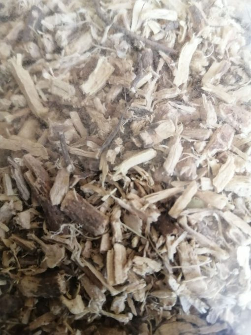 гръмотрън корен