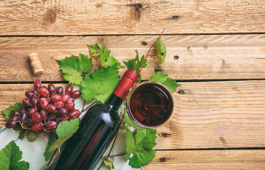 Плодове шизандра и вино
