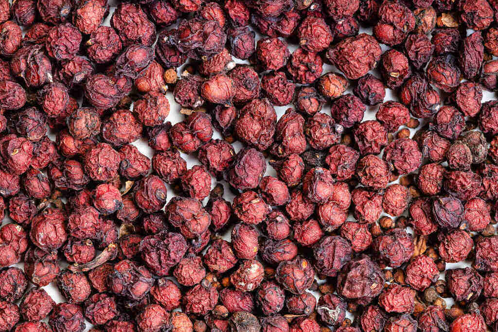 Сушени плодове от Шизандра