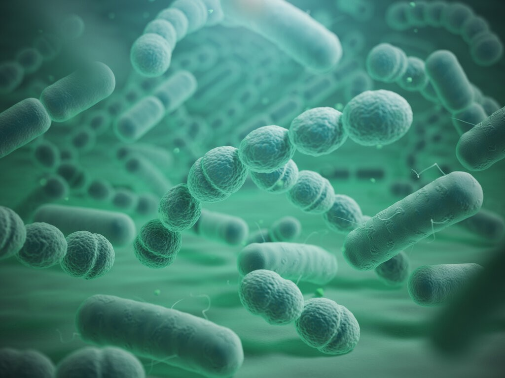 Бактерия на зелен фон
