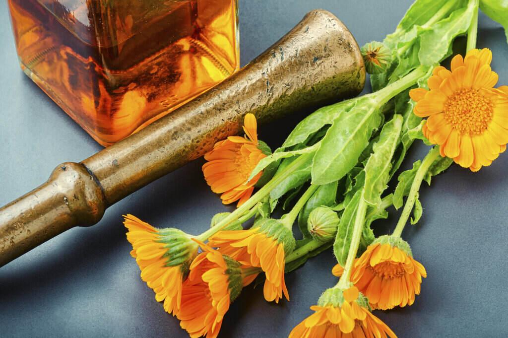 Тинктура с алкохол и Невен